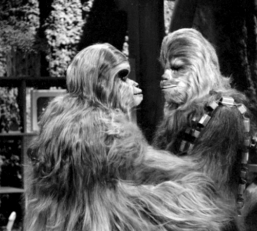 The Star Wars Holiday Special 1978 Malla with Chewbacca